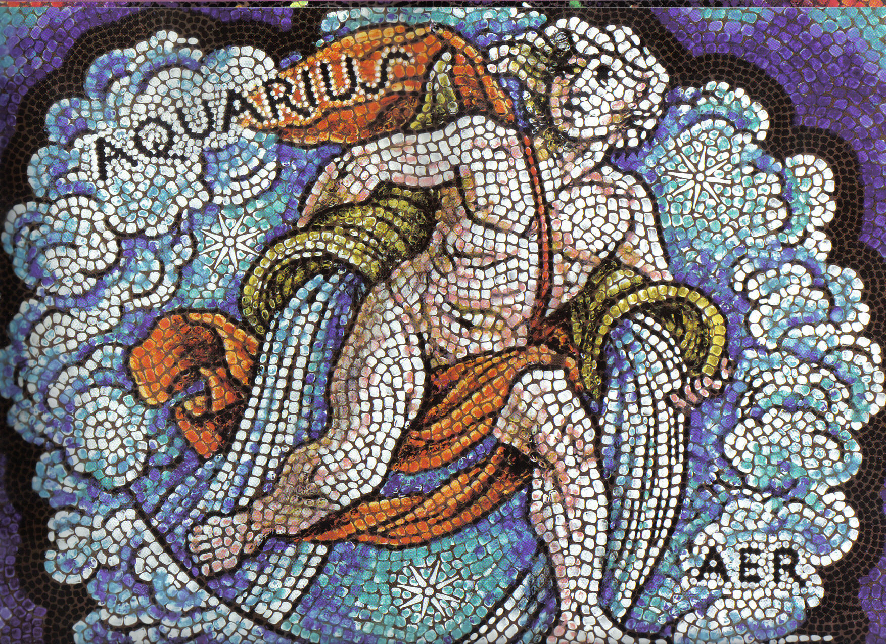 Aquarius-astrology-15139356-1753-1274
